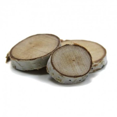 Koyal Centerpiece Vase Filler - Natural Birch Tree Mini Disk, 4 oz. (Birch Mint)
