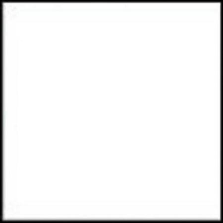 Chromacryl Acrylic Essentials, .5-Gallon, White