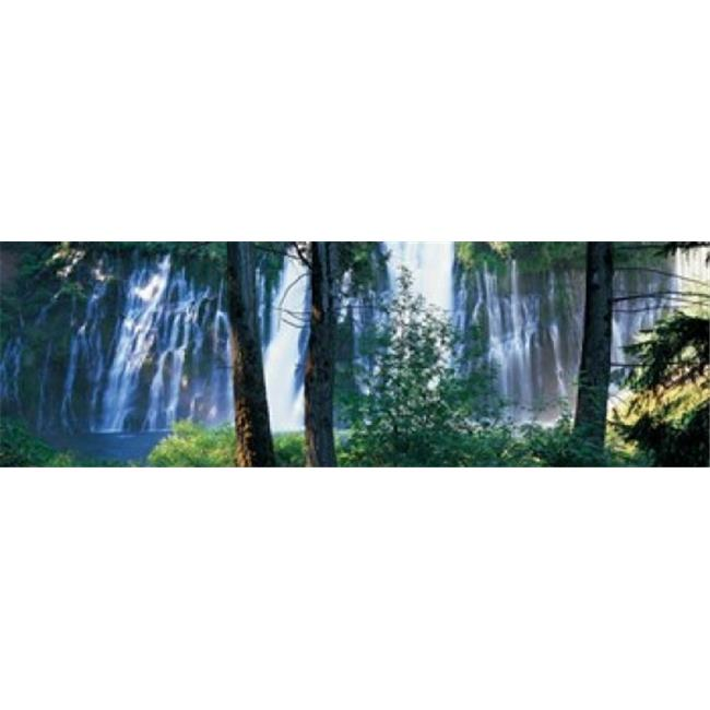 Panoramic Images PPI131072L Waterfall in a forest  McArthur-Burney Falls Memorial State Park  California  USA Poster Print by Panoramic Images - 36 x 12 - image 1 of 1