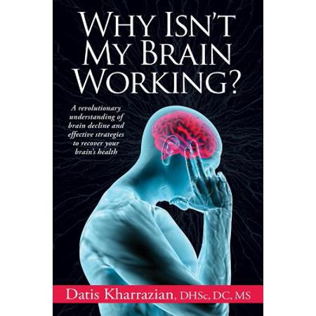 Why Isn't My Brain Working? (My Mouse Isn T Working On My Laptop)
