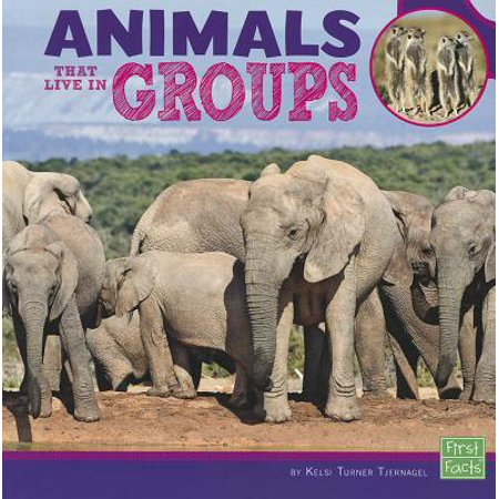 - Animals That Live in Groups