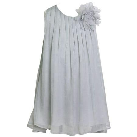 Pretty School Girls (Little Girls Silver Pretty Chiffon Flower Girl Dress)