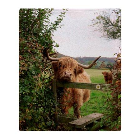 CafePress - Highland Cow - Soft Fleece Throw Blanket, 50