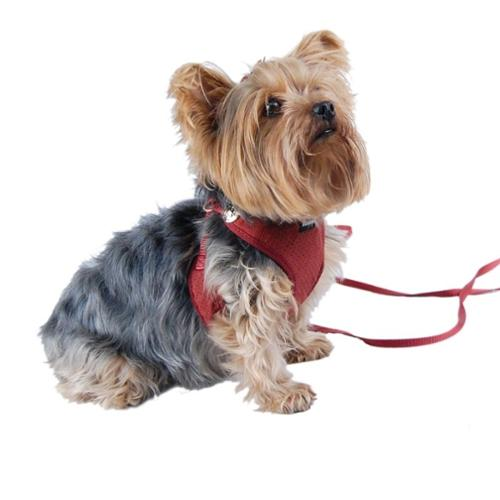 Burgundy Comfort Soft Pet Dog Puppy Leash Lead With Mesh Harness Girth Vest - Small (Gift for Pet)