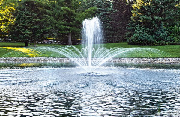 Airmax EcoSeries 1 2 HP DIsplay Fountain 100 ft. Cord by Airmax Ecosystems