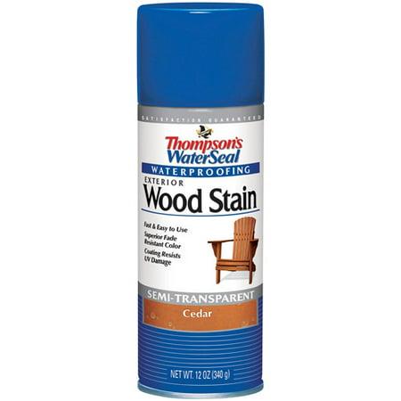Thompsons Waterseal 10521 Cedar Waterseal Wood Stain Spray Paint No 10521