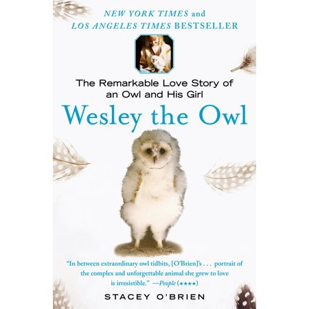 His Girl - Wesley the Owl : The Remarkable Love Story of an Owl and His Girl