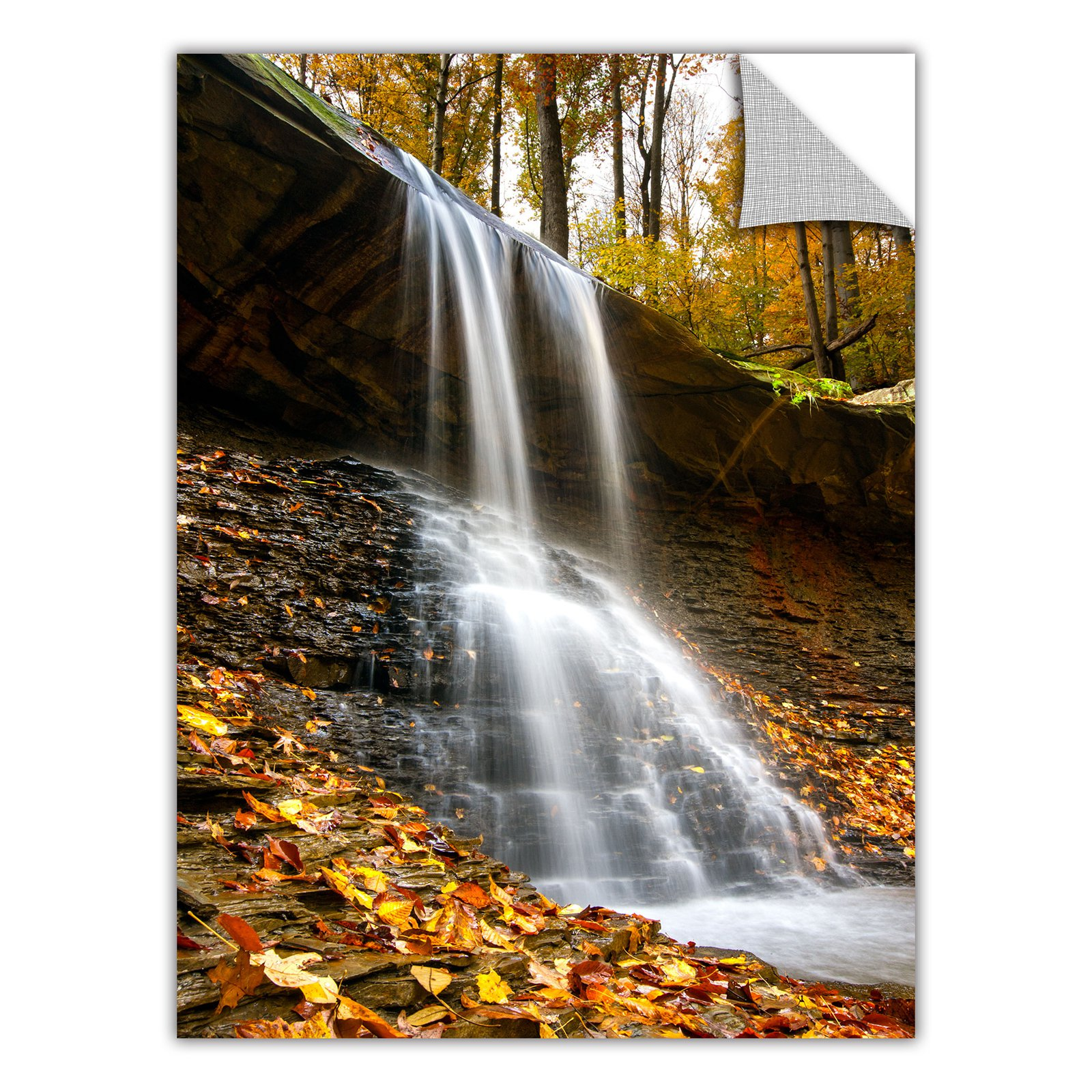 "Cody York ""Blue Hen Falls 2"" Removable Wall Art Graphic"