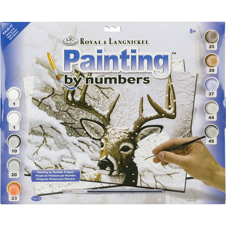 Junior Large Paint By Number Kit 15.25