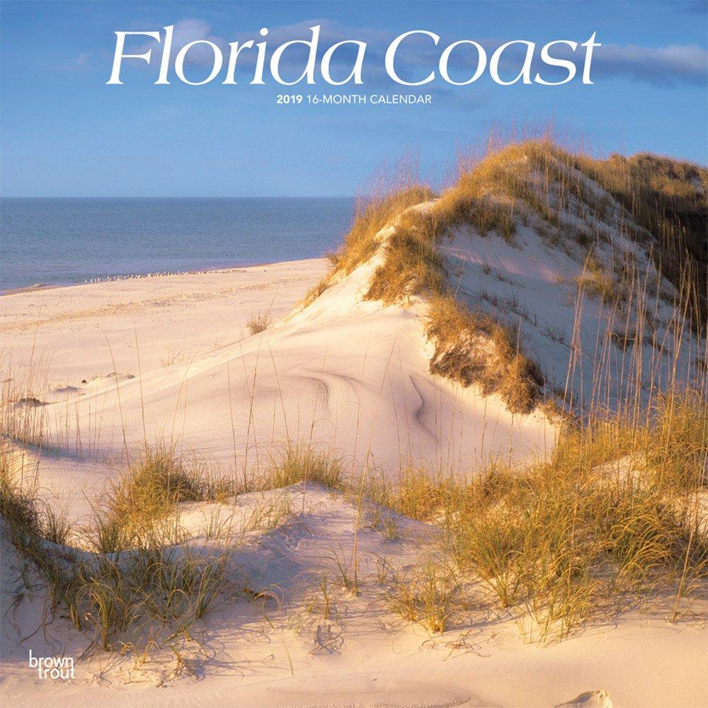 Florida Coast 2019 12 x 12 Inch Monthly Square Wall Calendar, USA United States of America Southeast State Nature