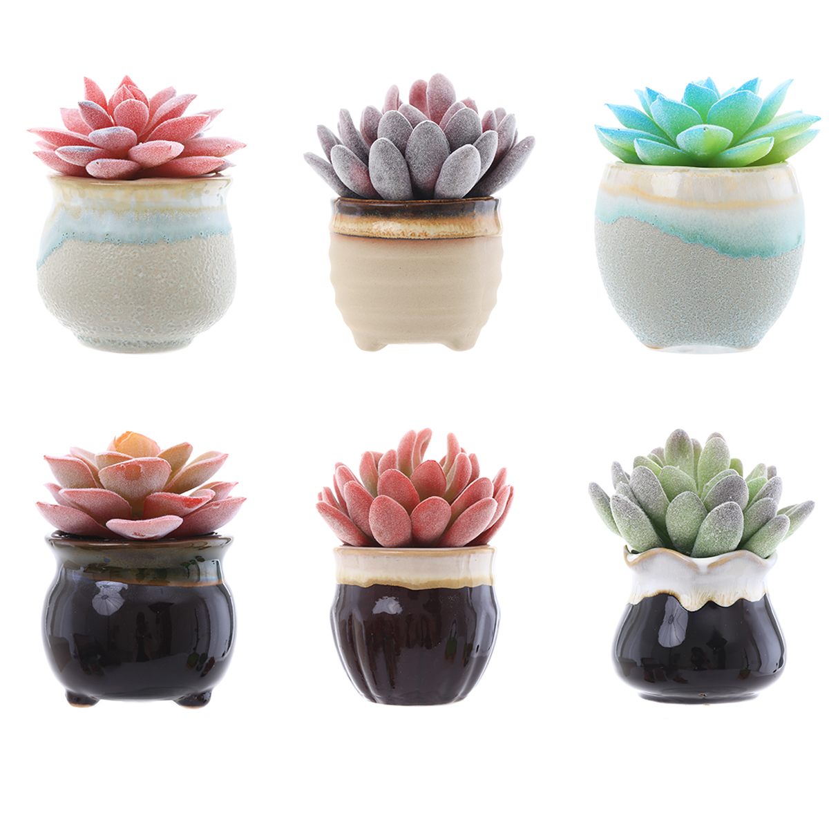 6 Styles Succulent Pots With Drainage 2 5 Inches 6 Color Pot Trays 4 Mini Plant Tools For Small Succulents Cactus Small Plant Flower Walmart Com Walmart Com