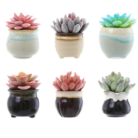 6 Styles Succulent Pots with Drainage, 2.5 inches, 6 Color Pot Trays & 4 Mini Plant Tools for Small Succulents, Cactus, Small Plant Flower](Mini Flower Pots Bulk)