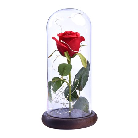 Fysho Beauty and the Beast Rose Red Rose in a Glass Dome with A Wooden Base for Valentine's Gifts Wedding Anniversary