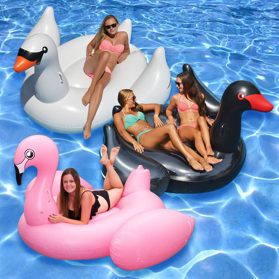 Jumbo and Giant Bird Floats for Swimming Pools, Pack of 3