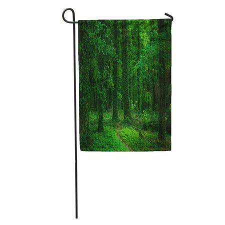 POGLIP Environment Green Forest Leaves Jungle Landscape Leaf Natural Nature Plant Garden Flag Decorative Flag House Banner 28x40 inch - image 1 of 2
