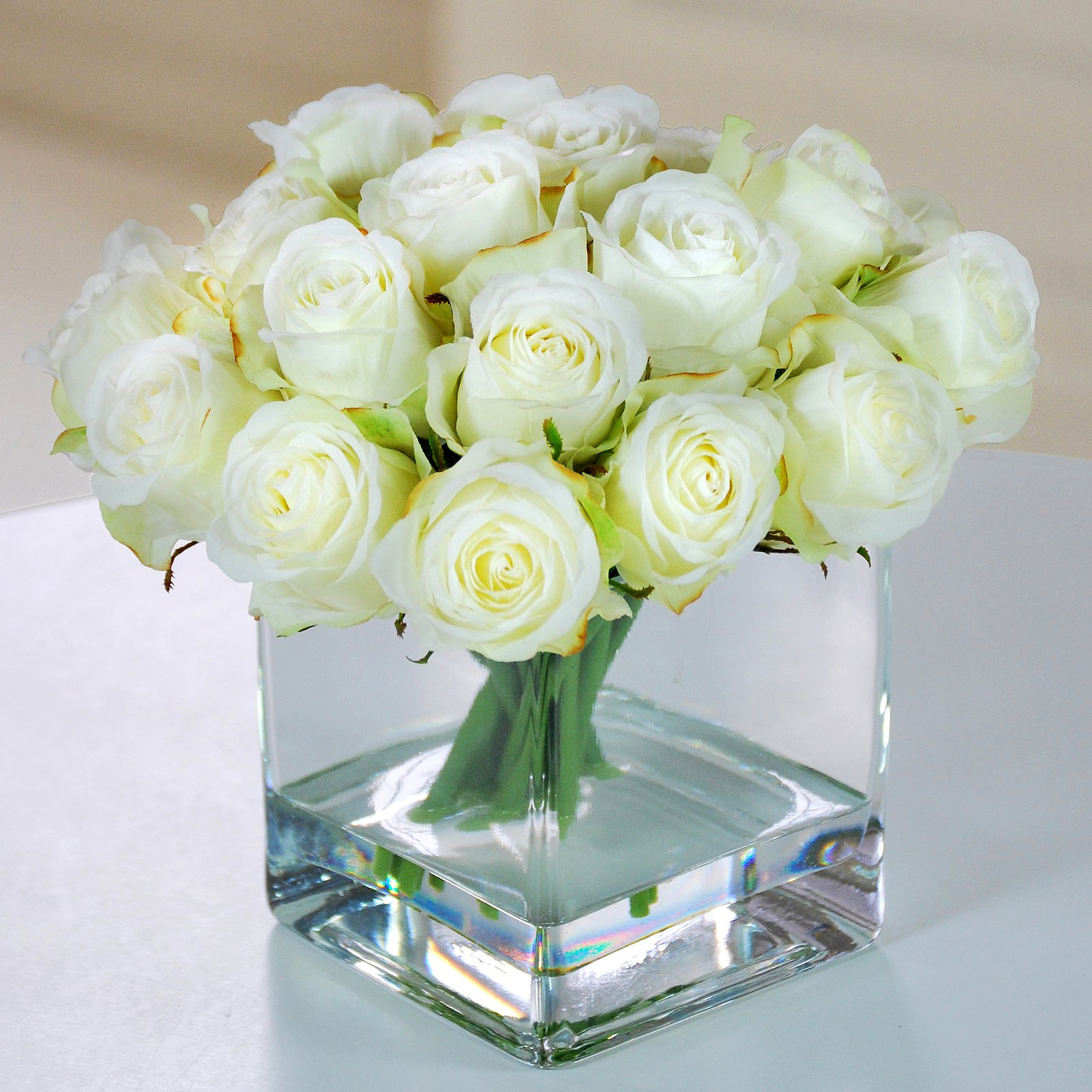 Jane Seymour Botanicals 9 in. Rose Buds in Square Glass V...