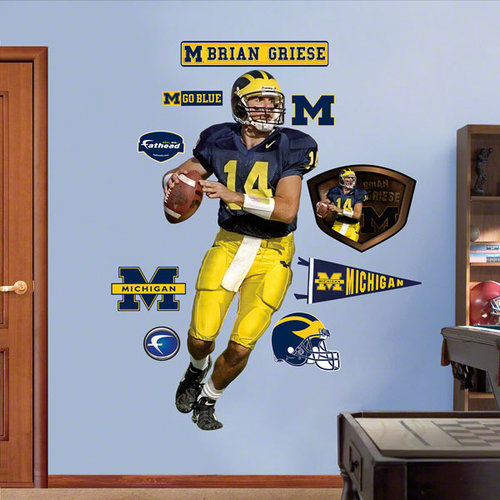Brian Griese Michigan 12-20493