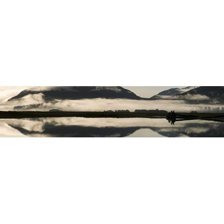 Fog And Mist Hang Over Mendenhall Wetlands   Mendenhall River Near Juneau In The Tongass National Forest Of Southeast Alaska Canvas Art   John Hyde  Design Pics  44 X 10