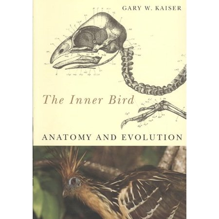 The Inner Bird  Anatomy And Evolution