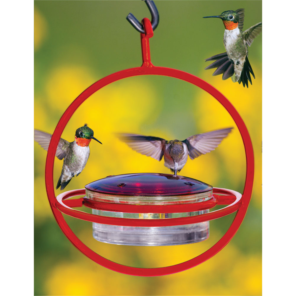 Recycled Glass Circle Hummingbird Feeder