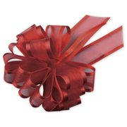 Deluxe Small Business Sales PR819-12 4 in. Sheer Satin Edge Pull Bows, Red