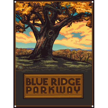 - Blue Ridge Parkway Big Oak Tree Metal Art Print by Paul A. Lanquist (9