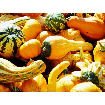 LAMINATED POSTER Pumpkin Thanksgiving Delicious Halloween Helloween Poster Print 24 x 36](Helloween Halloween Mp3)