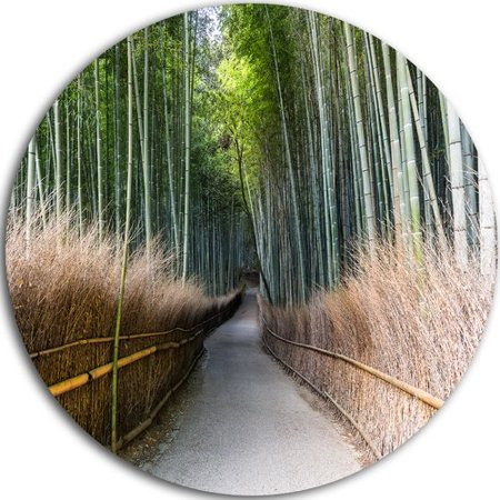 Design Art Straight Path In Bamboo Forest Photographic Print On Metal
