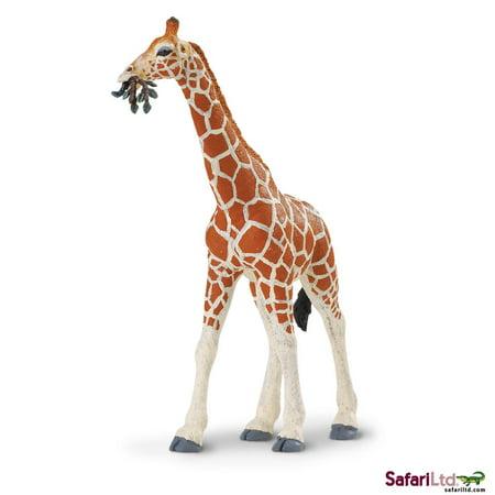 Safari Ltd. - Wild Safari Wildlife - Reticulated (Lime Giraffe)