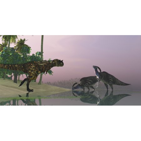 A Carnotaurus dinosaur attacks two Parasaurolophus dinosaurs eating underwater vegetation in the Cretaceous era Poster Print