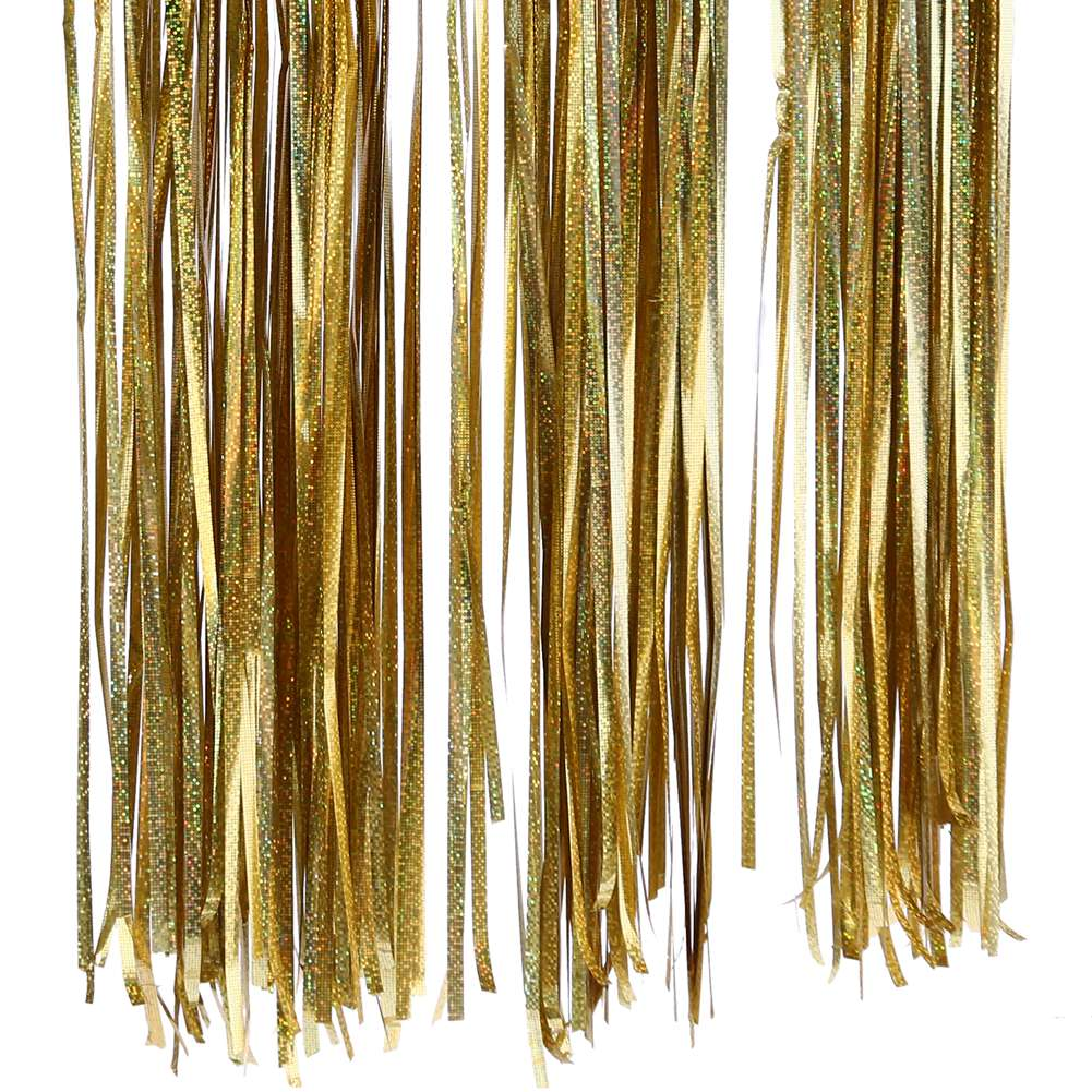 Akoada 3m Foil Fringe Tinsel Shimmer Curtain Door Wedding