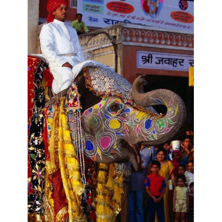 Man Riding Decorated Elephant in Street Parade of Annual Elephant Festival, Jaipur, India Print Wall Art By Paul (Annual Elephant)