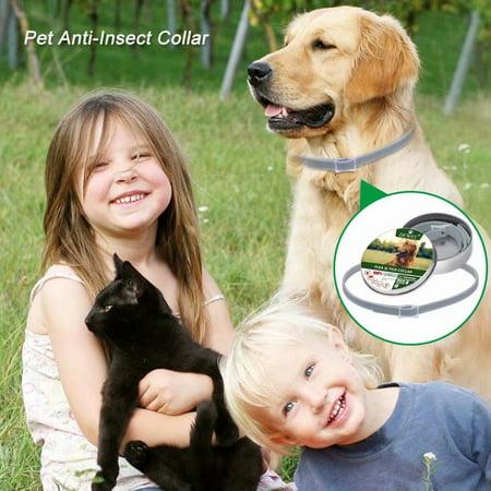 VicTsing Dewel Dog Collar Anti Flea Mosquitoes Ticks Insect Waterproof Herbal Pet Collar 8 Months Protection Dog