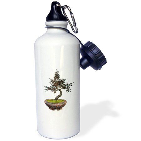 3dRose A cherry tree bonsai with cherries, Sports Water Bottle, 21oz A cherry tree bonsai with cherries Water Bottle is an eco-friendly way to carry your favorite drink to school, work or anywhere you go. This 21 oz stainless steel sports bottle features 2 caps, 1 easy-flow twist on drinking spout and 1 standard twist on cap.  Another great feature is the included carabiner clip that allows you to attach your bottle securely. Custom printed high gloss image sublimated directly to white glossy exterior surface.  Image on both sides. Color will not run or fade with use. Hand washing recommended.