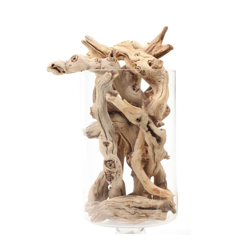 Natural Grapewood Vase Filler Decor, 2.2-Pounds