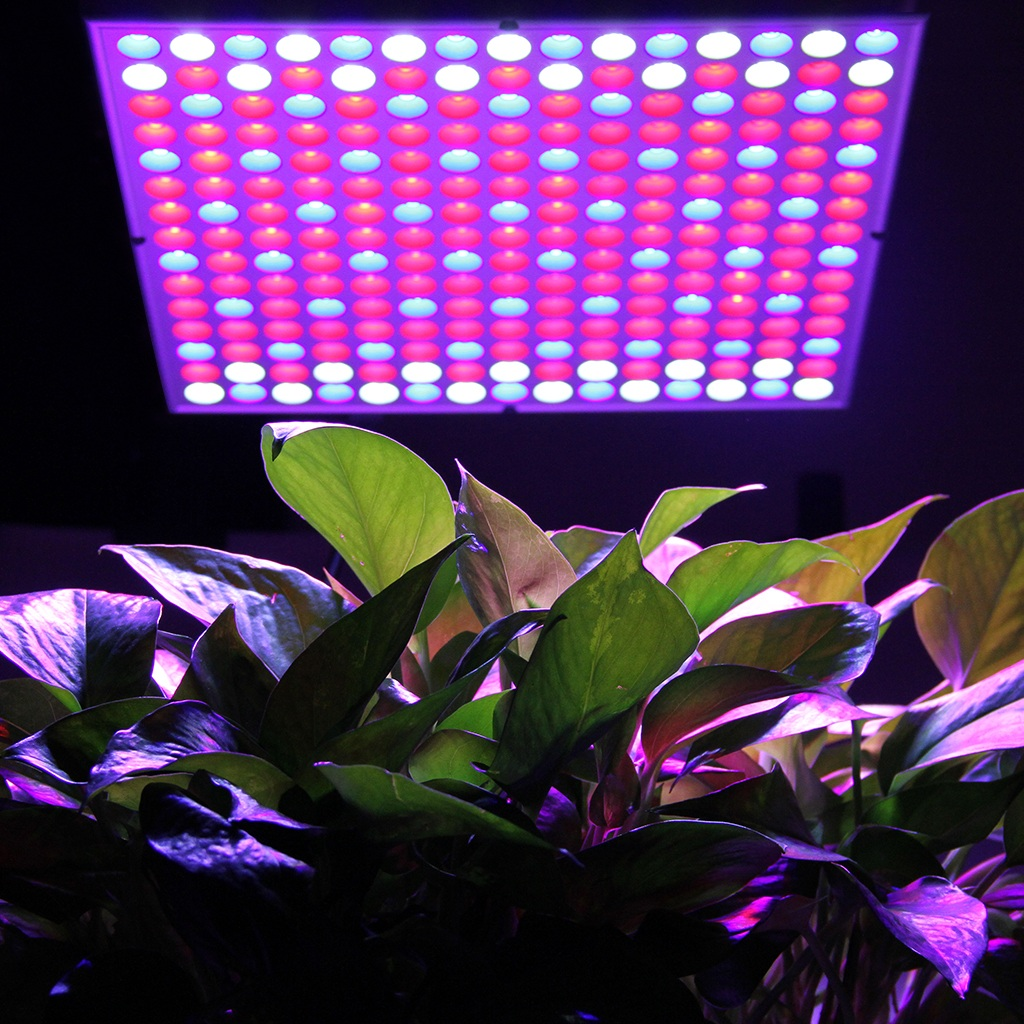 Excelvan 45W 225 LED Hydroponic Plant Grow Light and Lighting Panel, Full Spectrum for Plant Flower Vegetable Greenhouse Garden (135Red 60Blue 30White)
