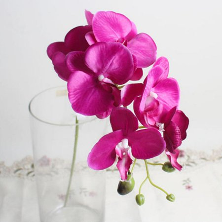 8 Head Phalaenopsis Orchid Silk Real Touch Flower White Artificial Flower Wedding Flower Orchid Floral Christmas Party Bronze Ornate Flowers