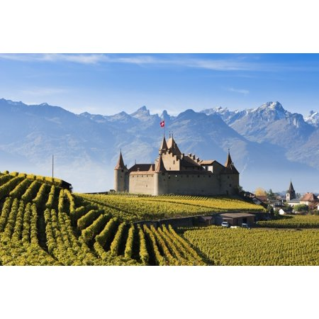 Switzerland Vineyards and castle Aigle Stretched Canvas - Yves Marcoux  Design Pics (19 x