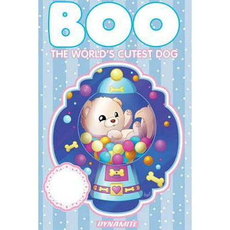 Boo the World's Cutest Dog, Volume 1