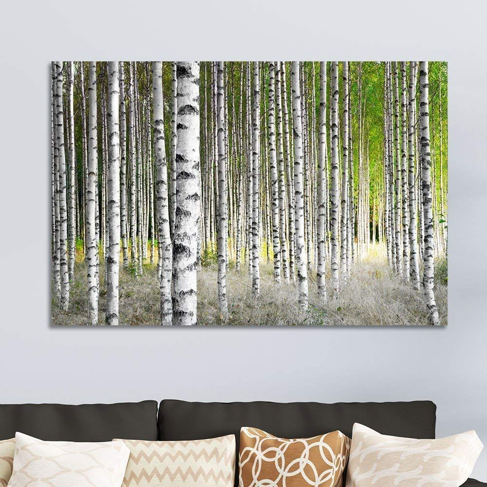 "wall26 Canvas Prints Wall Art - Birch Trees in Bright Sunshine in Late Summer | Modern Wall Decor/Home Decoration Stretched Gallery Canvas Wrap Giclee Print. Ready to Hang - 24"" x 36"" …"