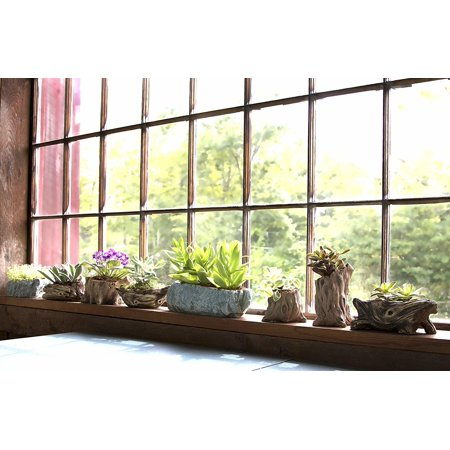 LIVINGbasics Decorative Plastic Artificial Plant,Succulent Greenery Bonsai Plants, 13.5*5.5*11.5cm - image 1 of 2