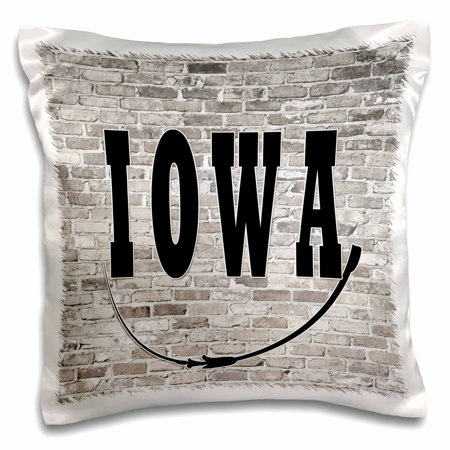 Iowa State Pillow (3dRose Iowa. State Capital is Des Moines. - Pillow Case, 16 by 16-inch )