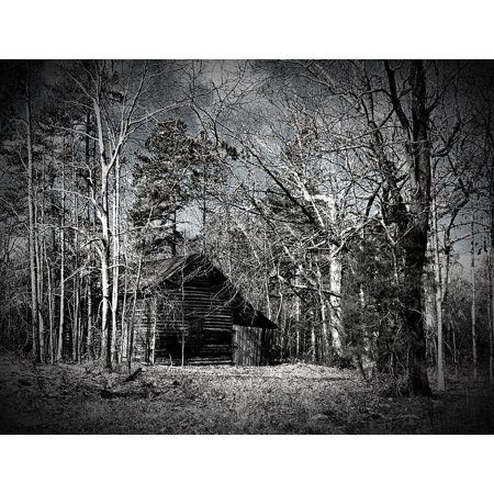 LAMINATED POSTER Woods Old Rustic Black And White Barn Aged Wood Poster Print 24 x (Black And White Photos Of Old People)