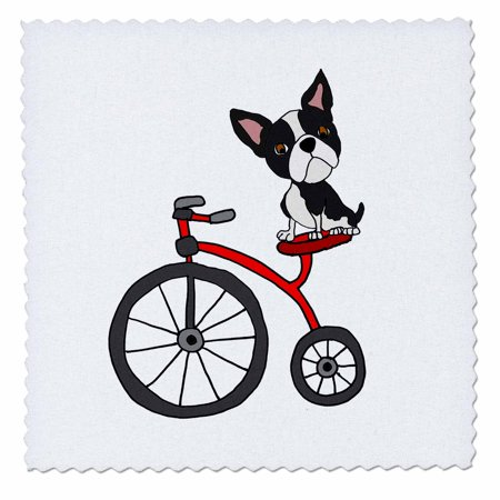 3dRose Cool Funny Boston Terrier Dog riding Tricycle Cartoon - Quilt Square, 8 by 8-inch ()