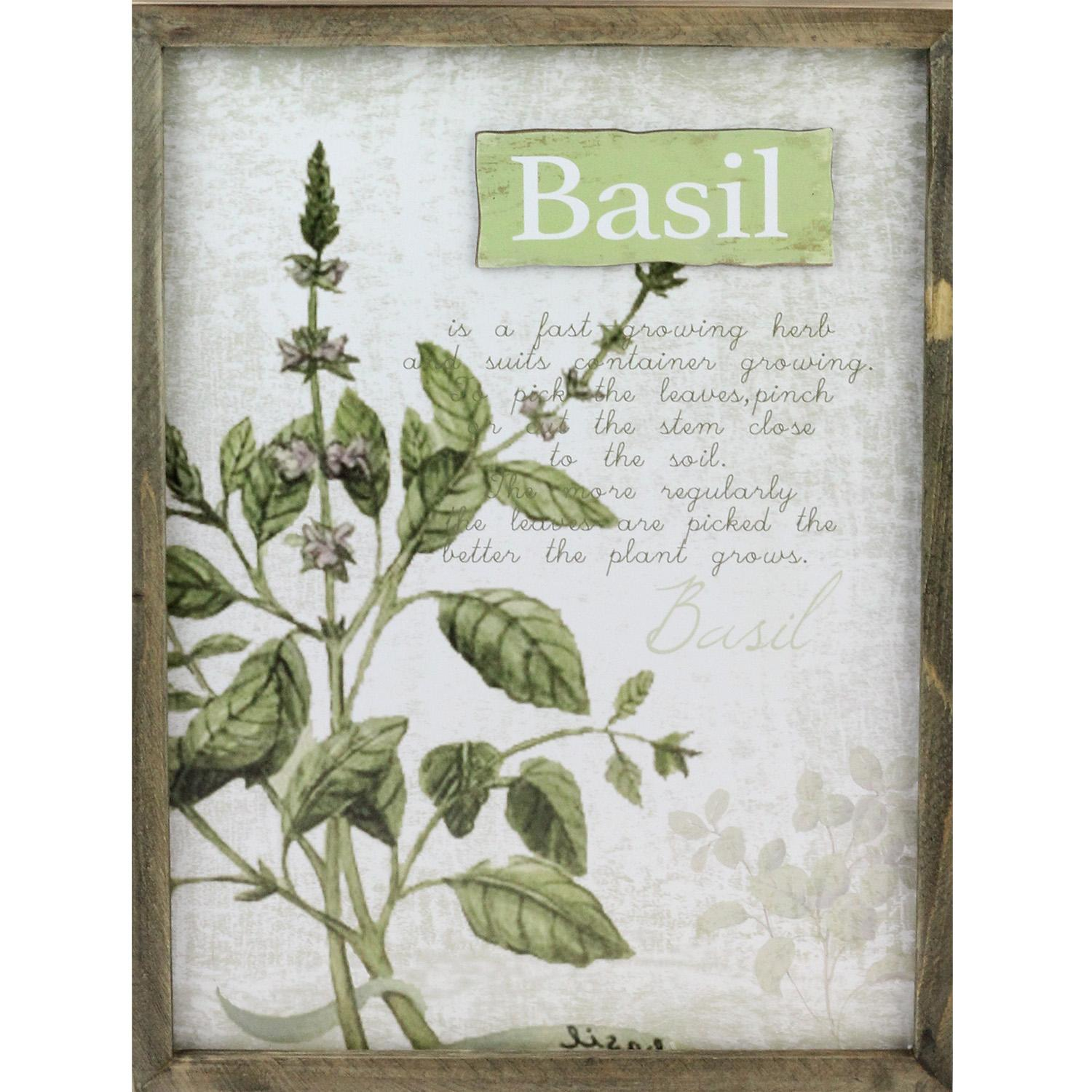 "15.75"" Decorative Basil Herb Wood Framed Wall Hanging Plaque by Melrose"