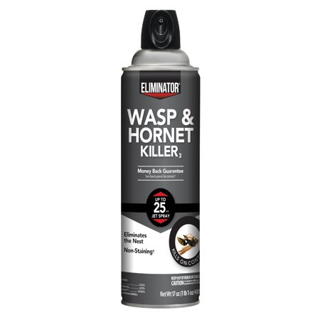 Eliminator Wasp & Hornet Killer, Aerosol Spray,