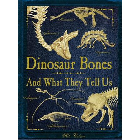 Dinosaur Bones : And What They Tell Us