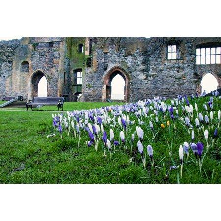 Canvas Print Spring Flowers Flower Newark Spring Arches Castle Stretched Canvas 10 x (Newark Castle)