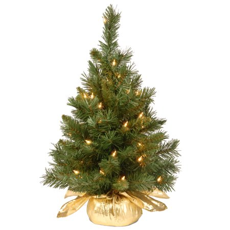 24u0022 Majestic Fir Tree in Gold Cloth Bag with 35 Clear lights