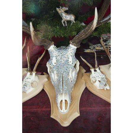 Canvas Print Swarovski Beads Decorated Crystal Deer Antler Stretched Canvas 10 x (Decorated Crystal)